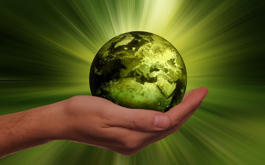 Ensure That Sustainability is Part of Your Business Plan
