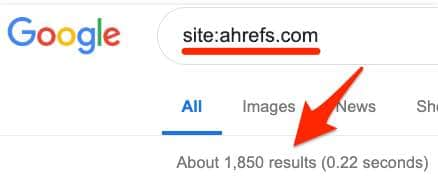 Google Indexing Check