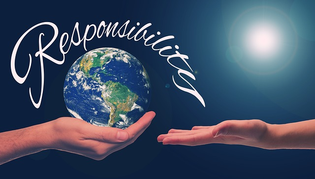 Responsible Sustainability is Your Business Success Story