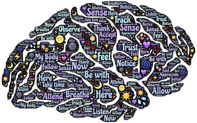 Understanding the connection between the structure of a story and how the brain absorbs and processes it is at the core of the Business of Story