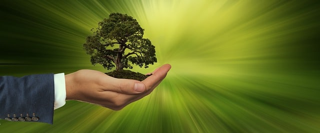 What Makes a Product Sustainable and Why Should We Care?